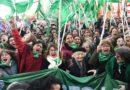 Aborto: la histórica media sanción de Diputados ya le mete presión al Senado