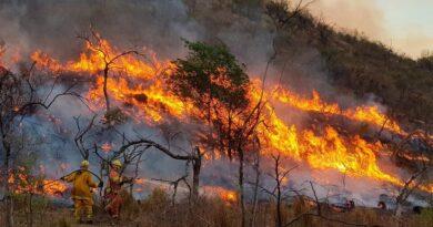 Análisis de los incendios en Córdoba