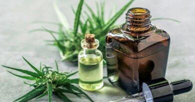 Qué dice el decreto que legalizó el autocultivo de cannabis medicinal y venta en farmacias